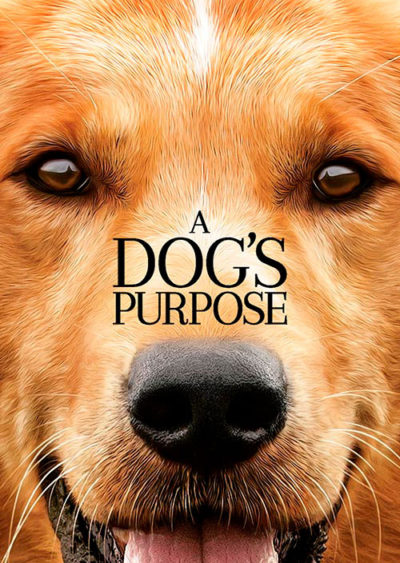A Dog´s Purpose